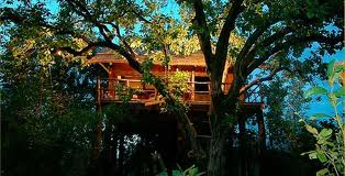 Treehouse Glamping in India