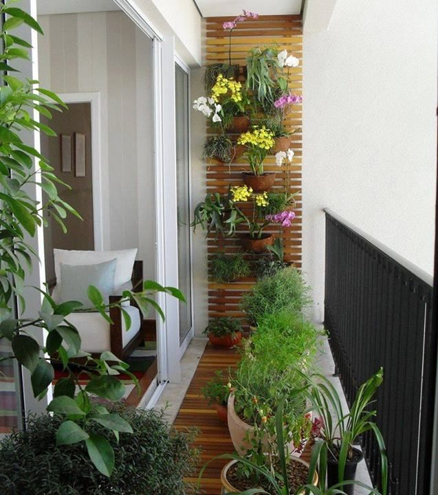 Tiny Balcony but with lush green and a good burst of colour via