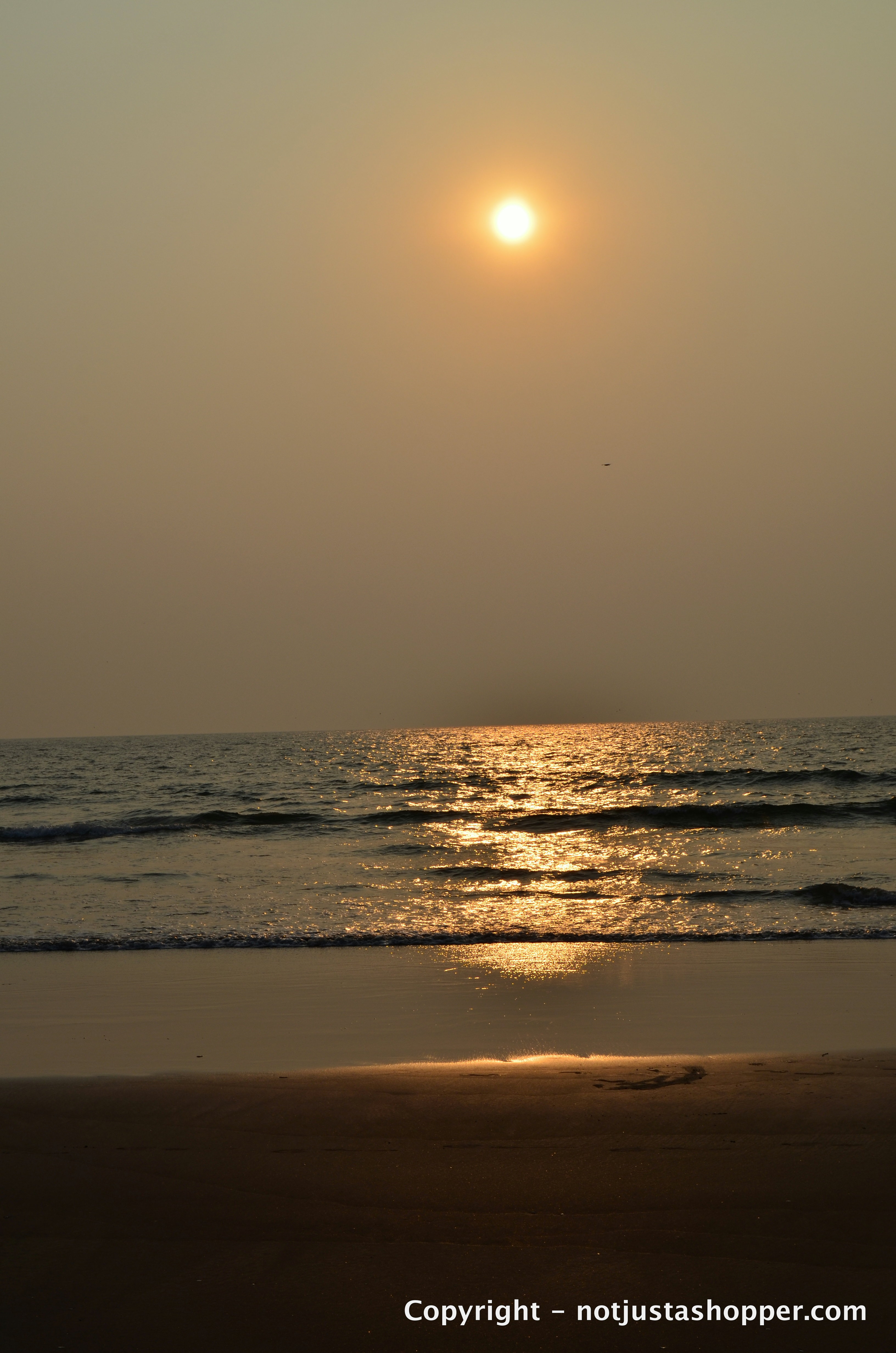 sunset-morjim-beach-goa