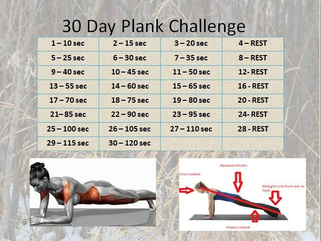 A 28 day plank challenge , anyone? via