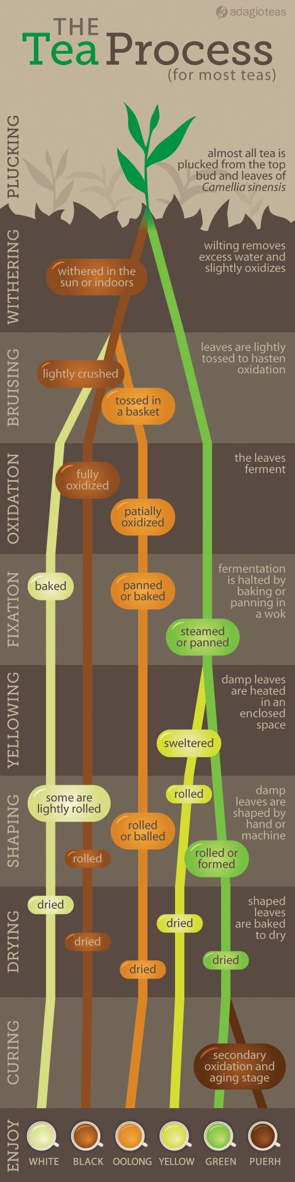 The tea process- simplified...via