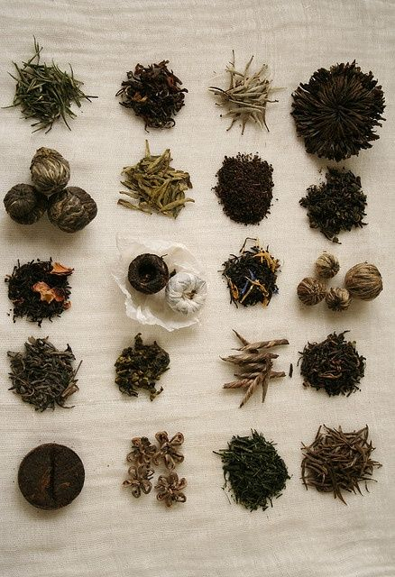 Tea leaves, tea leaves everywhere...which of these are going to make it to your cup? via